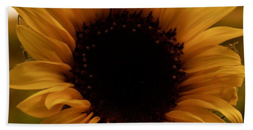 Flower Bath Sheet featuring the photograph Fall Harvest by Tiffany Erdman