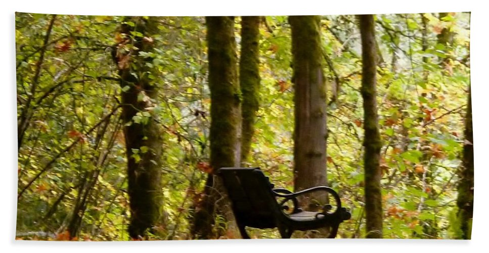 Park Bench Hand Towel featuring the photograph Fall Has Arrived by Susan Garren