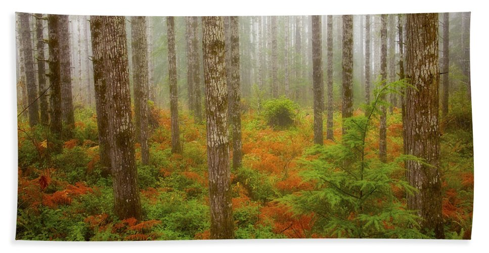 Fall Hand Towel featuring the photograph Fall Has Come by Ingrid Smith-Johnsen