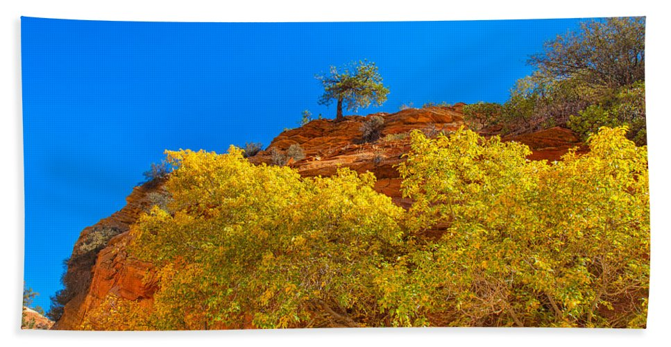 Landscape Bath Sheet featuring the photograph Fall In Zion by John M Bailey
