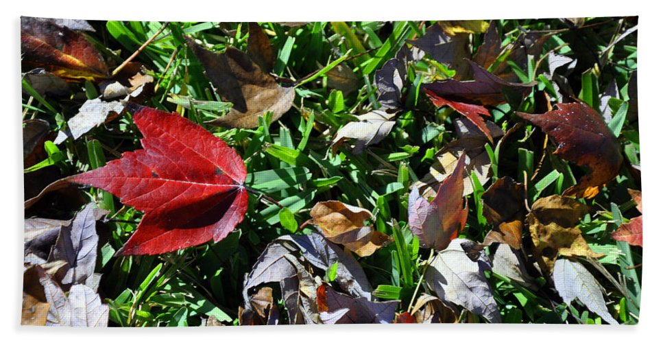 Landscape.nature Hand Towel featuring the photograph Fall Leaves by Deborah Good