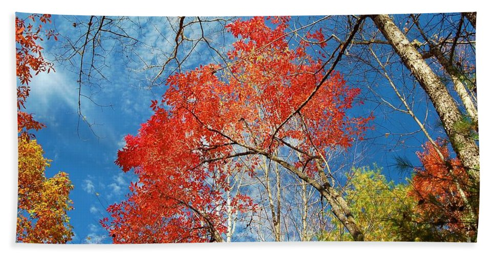 Autumn Hand Towel featuring the photograph Fall Sky by Patrick Shupert