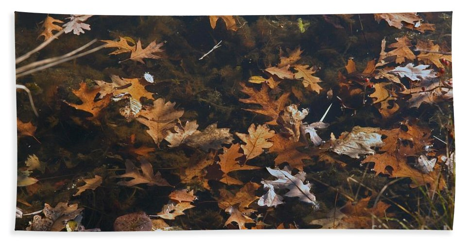 Fall Hand Towel featuring the photograph Fallen by Joseph Yarbrough