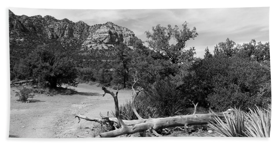 Arizona Bath Sheet featuring the photograph Fallen Tree by Two Bridges North
