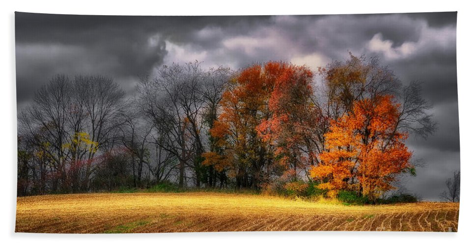 Field Bath Sheet featuring the photograph Falling Into Winter by Lois Bryan