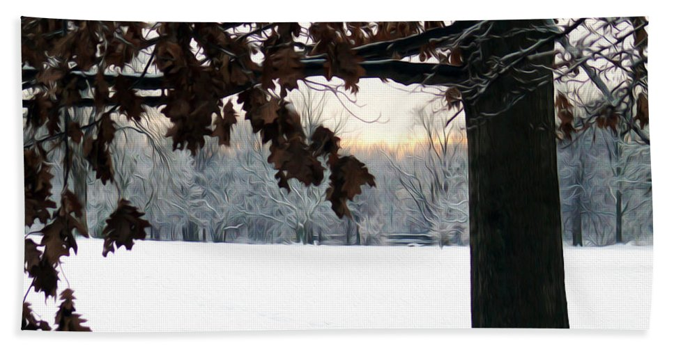 Snow Hand Towel featuring the photograph Falls Colors At First Snowfall by Tracy Winter