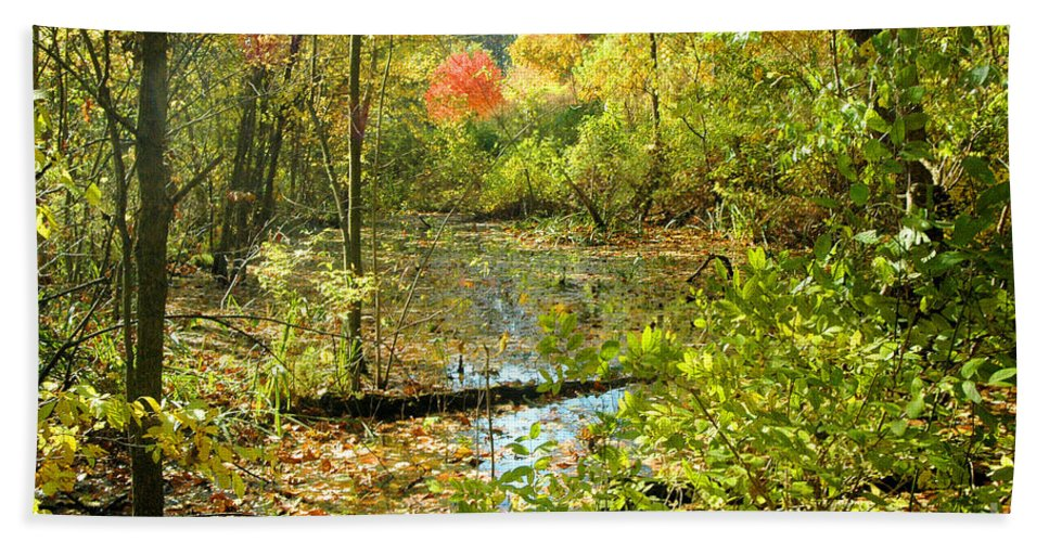Leaves Hand Towel featuring the photograph Fallscape by Trish Hale