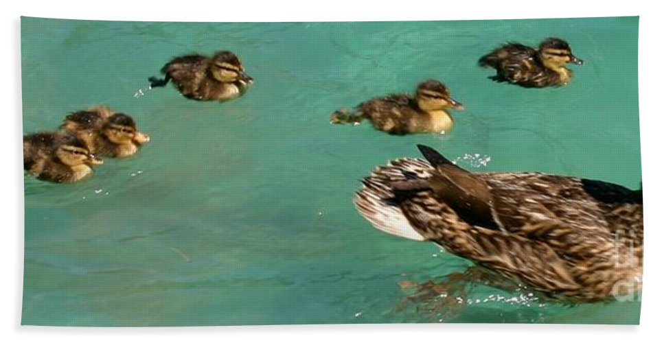 Ducks In A Row Hand Towel featuring the photograph Family Flotilla 2 by Barbie Corbett-Newmin