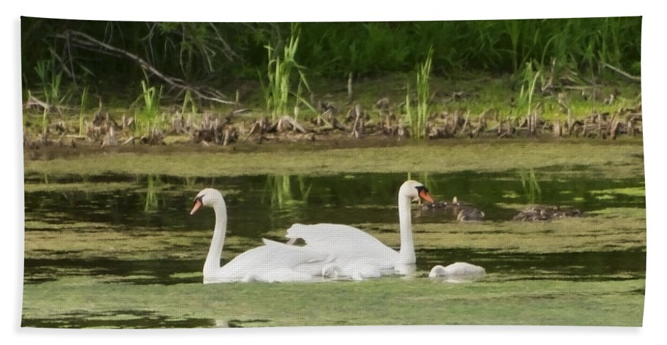 Swan Hand Towel featuring the photograph Family Is Everything by Donna Doherty