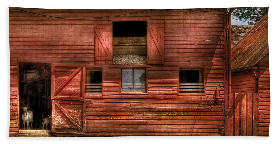 Savad Bath Sheet featuring the photograph Farm - Barn - Visiting The Farm by Mike Savad