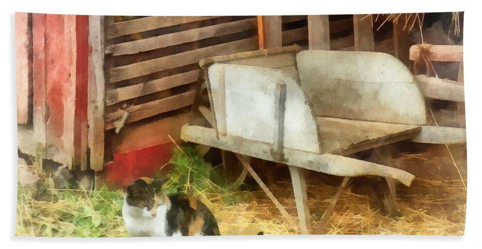 Cat Hand Towel featuring the photograph Farm Cat by Susan Savad