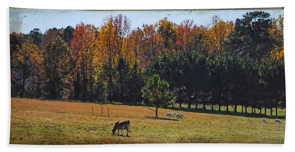 Wright Bath Sheet featuring the photograph Farm Journal - Grazing by Paulette B Wright