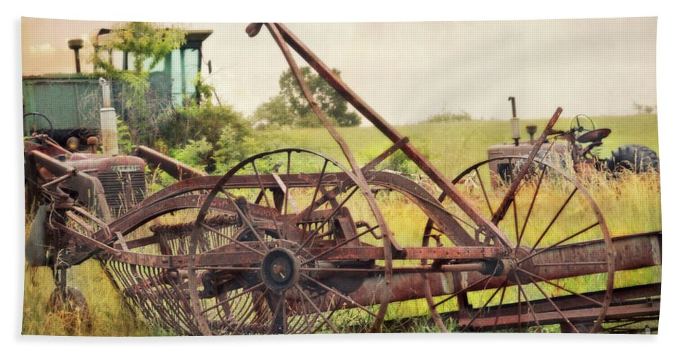 Farm Hand Towel featuring the photograph Farm Life by Beth Ferris Sale