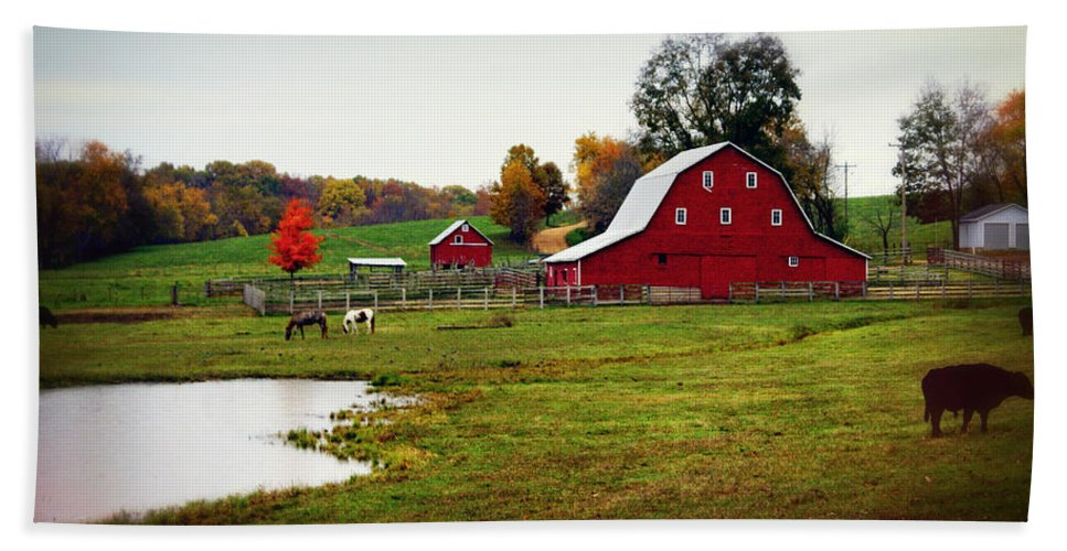 Barn Hand Towel featuring the photograph Farm Perfect by Marty Koch