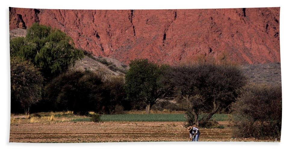 Argentina Hand Towel featuring the photograph Farmer In Field In Northern Argentina by James Brunker