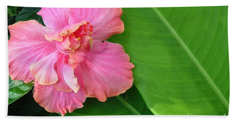 Hawaii Iphone Cases Bath Sheet featuring the photograph Favorite Flower 2 by James Temple