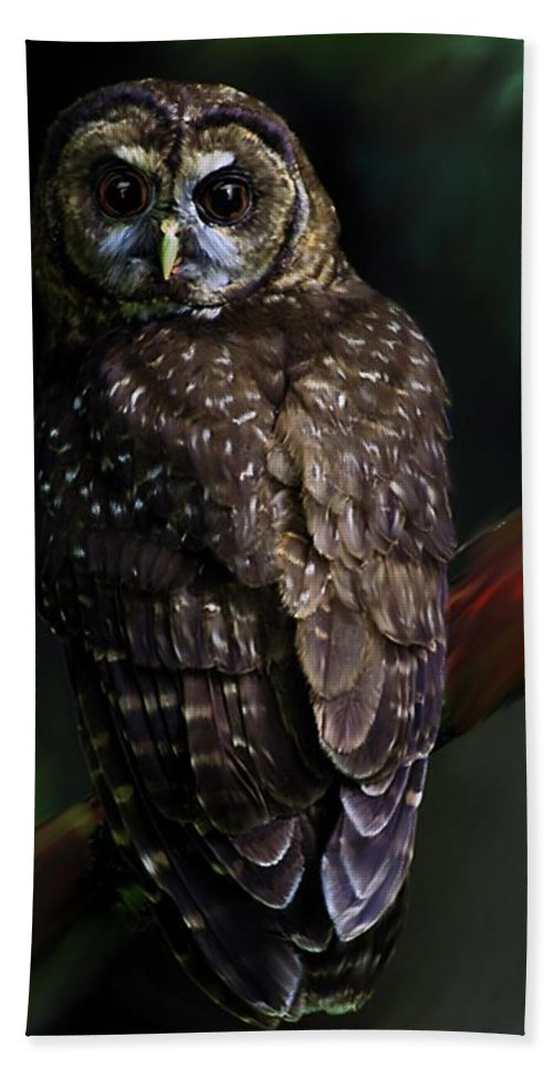 Owl Bath Sheet featuring the painting Feathered Beauty by Shere Crossman