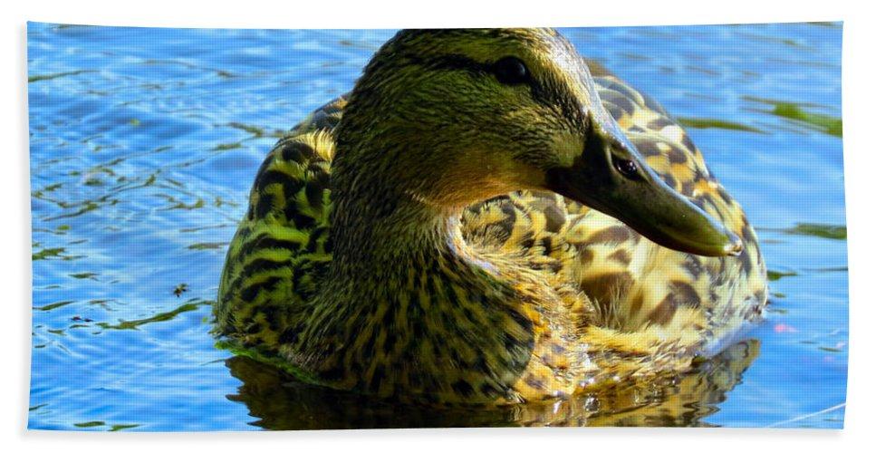 Mallard Bath Sheet featuring the photograph Feathered Female by Art Dingo