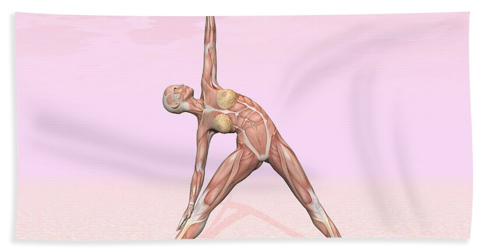 Anatomy Bath Sheet featuring the digital art Female Musculature Performing Triangle by Elena Duvernay