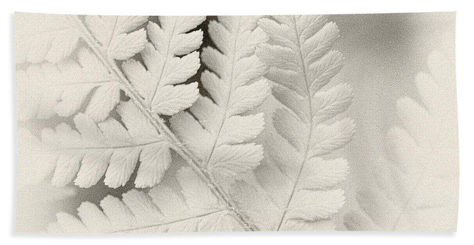 Leaf Hand Towel featuring the photograph Fern Leaf by Janet Burdon