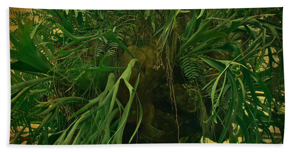 Ferns Hand Towel featuring the photograph Ferns In The Jungle Room by Mother Nature