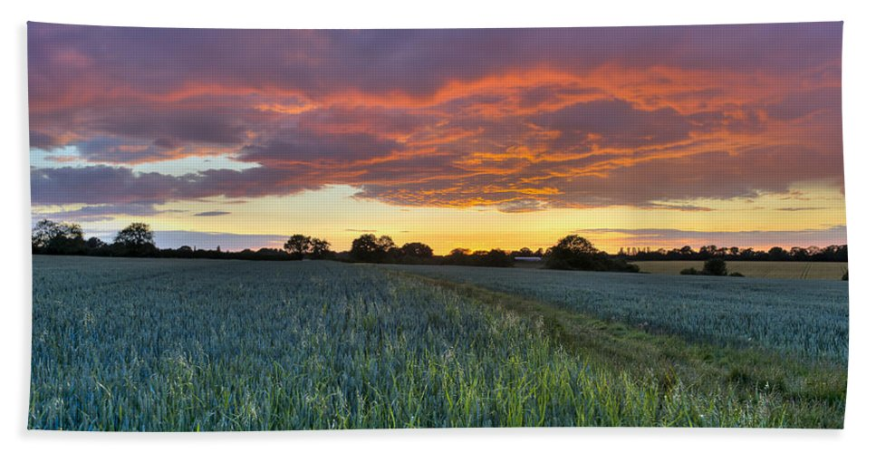 Sunset Hand Towel featuring the photograph Field At Sunset by Gary Eason