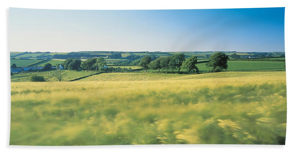 Photography Bath Towel featuring the photograph Field Near Barnstaple, North Devon by Panoramic Images
