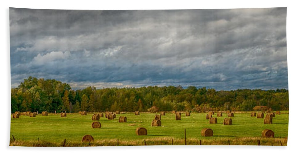 Rural Bath Towel featuring the photograph Field Of Bales by Paul Freidlund