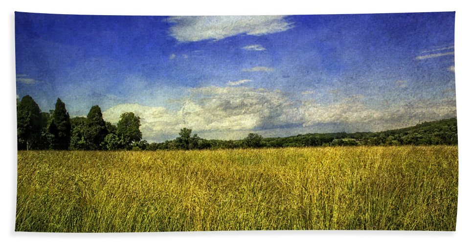 Field Hand Towel featuring the photograph Field Of Gold by Madeline Ellis