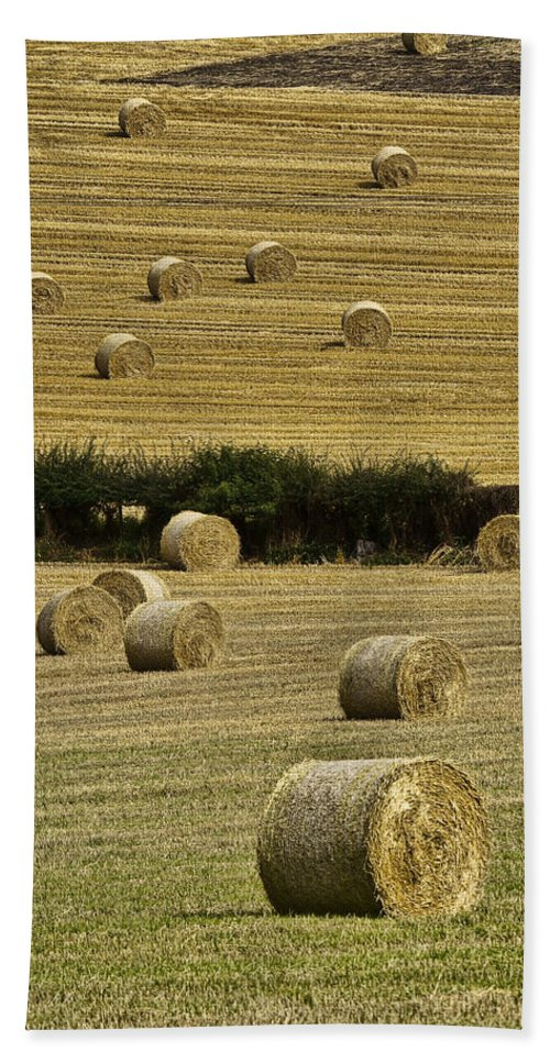 Landscape Bath Sheet featuring the photograph Field Of Hay Bales by Marcia Colelli