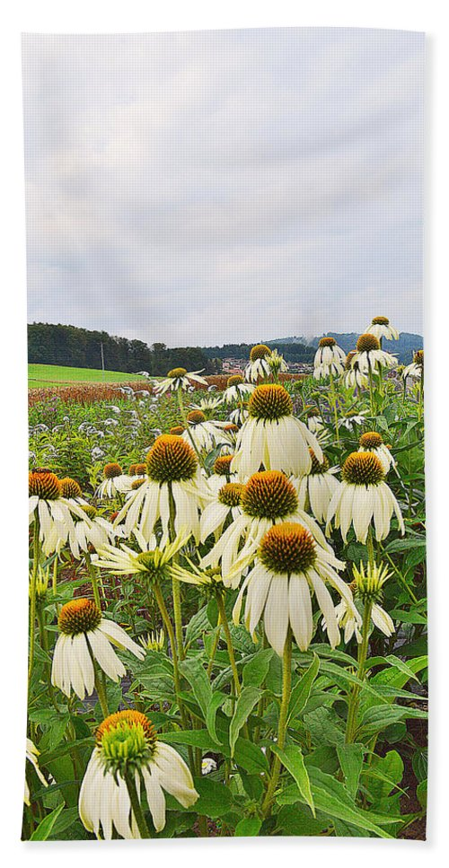 Echinacea Bath Sheet featuring the photograph Field Of Medicine Perspective by Felicia Tica