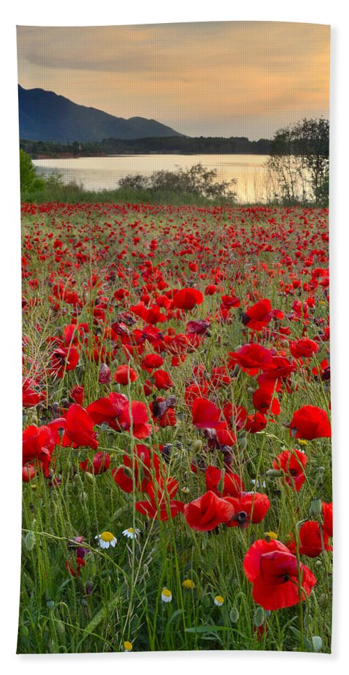 Poppies Hand Towel featuring the photograph Field Of Poppies At The Lake by Guido Montanes Castillo