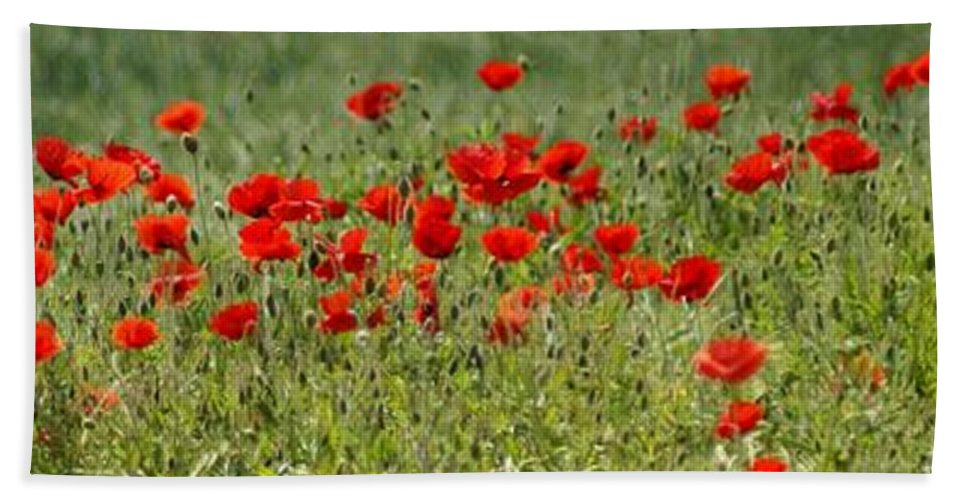 Poppies Bath Sheet featuring the photograph Field Of Poppies by Carol Lynch