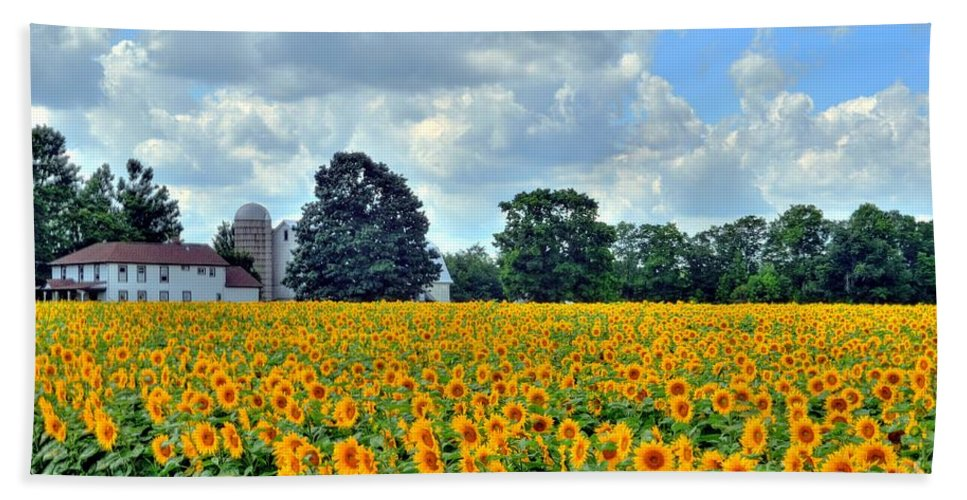 Sunflower Hand Towel featuring the photograph Field Of Sunflowers by Kathleen Struckle