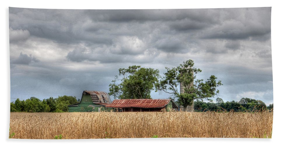 North Carolina Hand Towel featuring the photograph Fields Of Golden Grain by Benanne Stiens