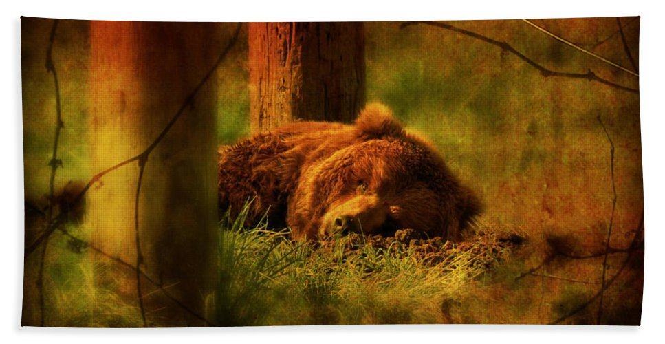 Bear Hand Towel featuring the photograph Fiercely Tired by Micki Findlay