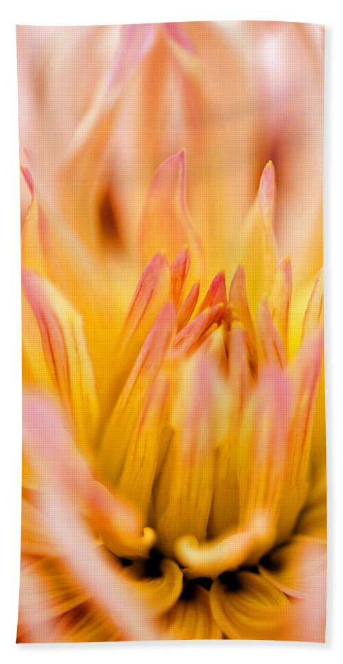 Flower Hand Towel featuring the photograph Fiery Dahlia by Marilyn Hunt