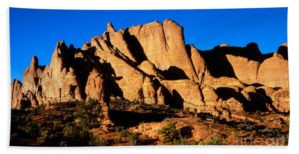 Arches National Park Hand Towel featuring the photograph Fiery Fins by Tracy Knauer