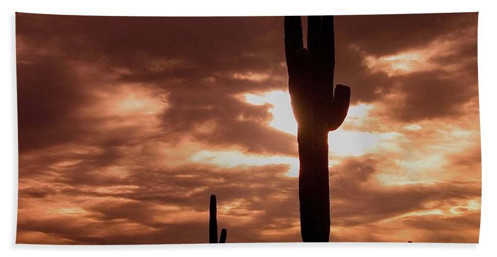 Film Homage Orson Welles Saguaro Cacti The Other Side Of The Wind Carefree Arizona 2004 Hand Towel featuring the photograph Film Homage Orson Welles Saguaro Cacti The Other Side Of The Wind Carefree Arizona 2004 by David Lee Guss