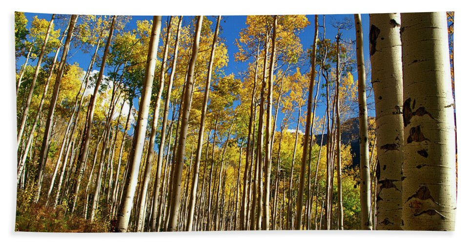 Independence Pass Hand Towel featuring the photograph Finding You by Jeremy Rhoades