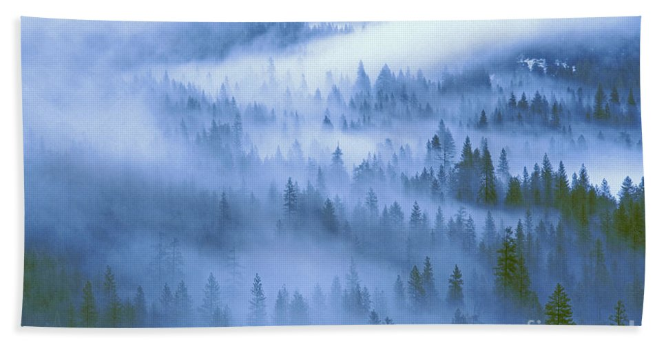 North America Hand Towel featuring the photograph Fir Trees Shrouded In Fog In Yosemite Valley by Dave Welling
