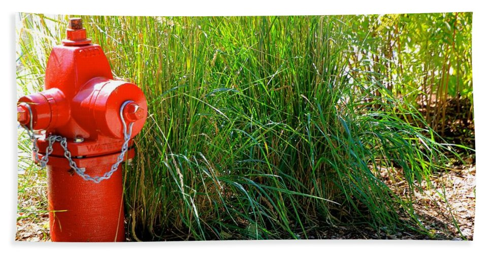 Nature Bath Sheet featuring the photograph Fire Hydrant by Debbie Nobile