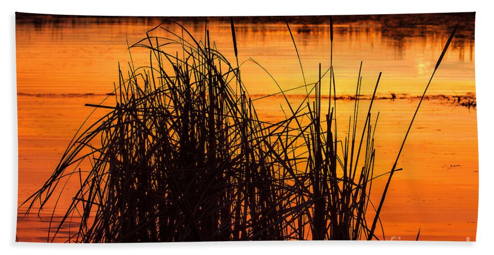 Sunsets Bath Sheet featuring the photograph Fire On The Marsh by Jim Garrison