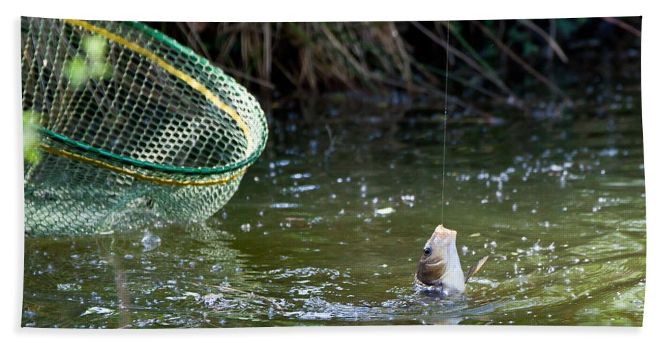 Fish Hand Towel featuring the photograph Fish Caught On A Line In Water by Simon Bratt Photography LRPS