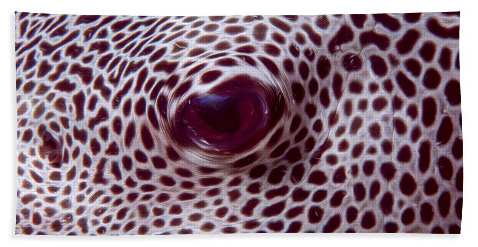 Animal Bath Sheet featuring the digital art Fish Eye by Roy Pedersen