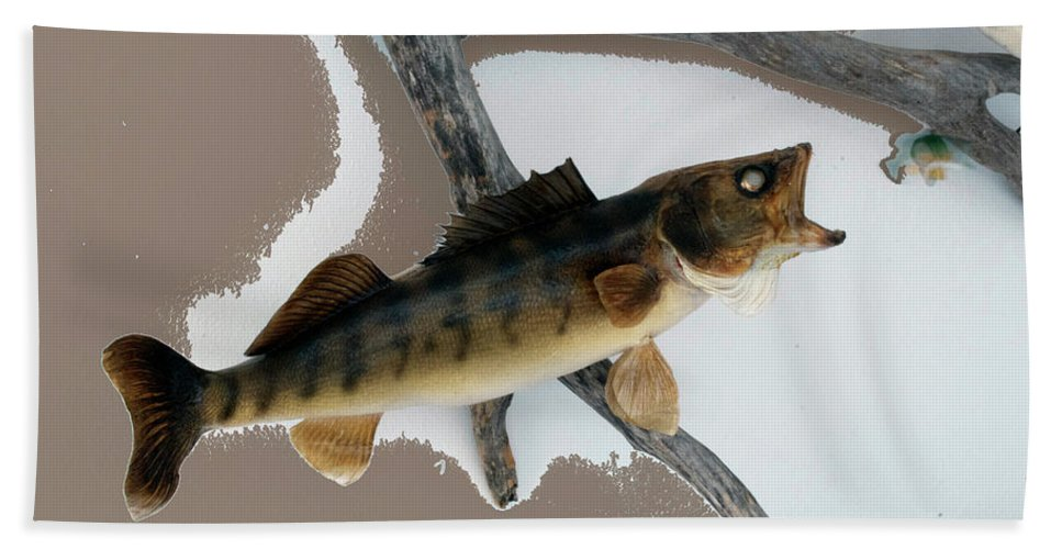 Animals Bath Sheet featuring the photograph Fish Mount Set 02 C by Thomas Woolworth