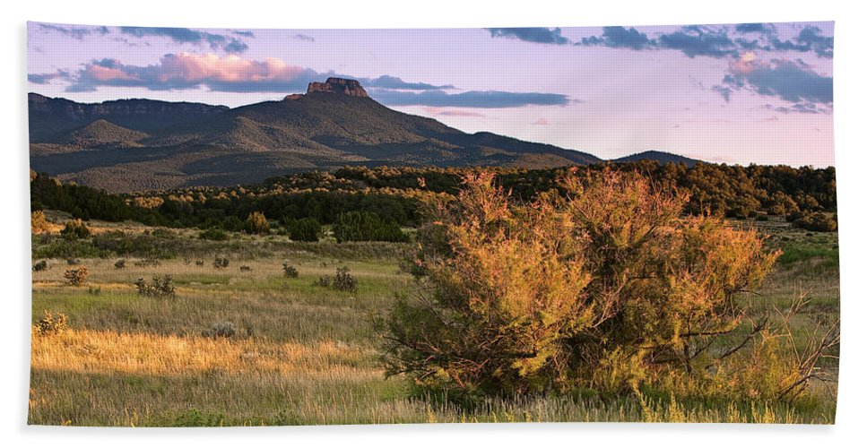 Fishers Peak Hand Towel featuring the photograph Fishers In Summer by Pam Colander
