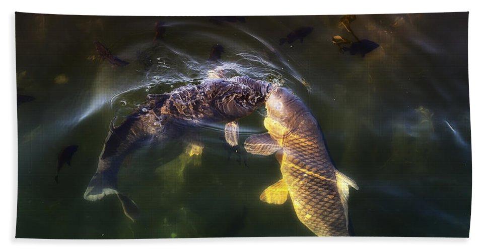 Fish Bath Sheet featuring the photograph Fishy Kisses by Linda Tiepelman