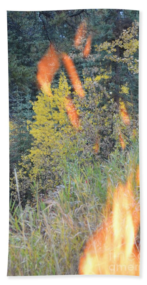 Flame Bath Sheet featuring the photograph Flame Colored Fall. by Brian Boyle