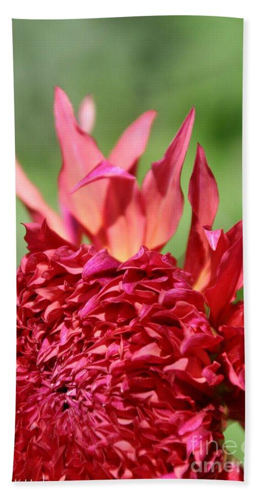 Flower Bath Sheet featuring the photograph Flaming Petals by Susan Herber